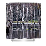 Cypress Swamp Shower Curtain