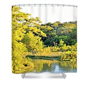 Cypress Trees Along The Guadalupe Shower Curtain