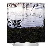 Cypress Trees And Water2 Shower Curtain