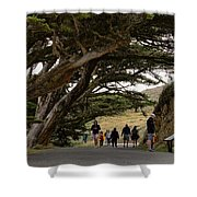Cypress Tunnel Shower Curtain
