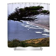 Cypress View Shower Curtain
