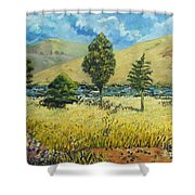 Cypresses At Lydenburg Shower Curtain