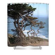 Cypress On The Cliff 15 Shower Curtain