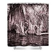 Cyprus Knotts Shower Curtain