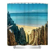 Cyprus Of The Sea Shower Curtain