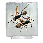 D2b6337 Wasps On Sonoma Mountain Shower Curtain