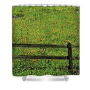D7b6306 Fence And Poppies Shower Curtain