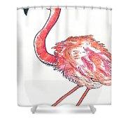 Da Flamingo Shower Curtain