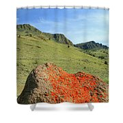 Da5872 Lichen Covered Rock Below Abert Rim Shower Curtain