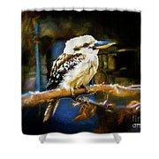 Kookaburra Dacelo Novaeguineae Shower Curtain