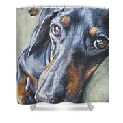 Dachshund Black And Tan Shower Curtain