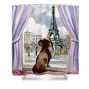Dachshund In Paris Shower Curtain