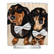 Dachshunds And Bowties Shower Curtain