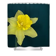 Daffo The Dilly Shower Curtain
