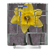 Daffodil 1 Shower Curtain
