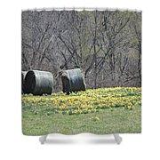 Daffodil Bales Shower Curtain