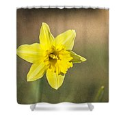Daffodil Composite Shower Curtain