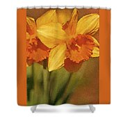 Daffodil Delights Shower Curtain