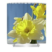 Daffodil Flowers Artwork Floral Photography Spring Flower Art Prints Shower Curtain