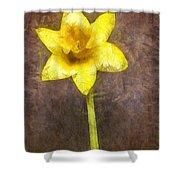 Daffodil Pencil Shower Curtain