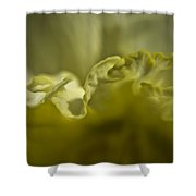 Daffodil Ruffles Shower Curtain