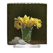 Daffodil Still Life Shower Curtain