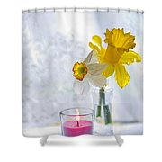 Daffodils And The Candle Shower Curtain