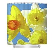 Daffodils Art Print Floral Sky Bouquet Daffodil Flower Baslee Shower Curtain