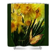 Daffodils - First Flower Of Spring Shower Curtain