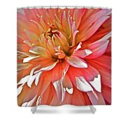 Dahlia Blush Shower Curtain
