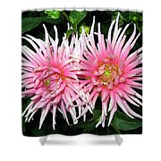 Dahlia Duo Shower Curtain
