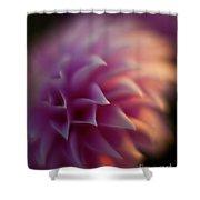 Dahlia Dusk Shower Curtain