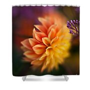 Dahlia Fireball Shower Curtain
