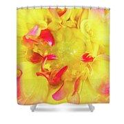 Dahlia Flower Shower Curtain