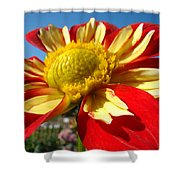 Dahlia Flower Art Prints Canvas Red Yellow Dahlias Baslee Troutman Shower Curtain