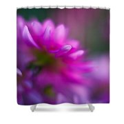 Dahlia Menagerie Shower Curtain