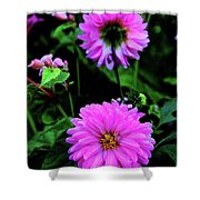 Dahlia Mirror Shower Curtain