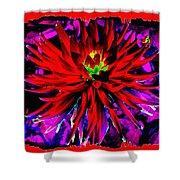 Dahlia Rouge Texture Avec La Frontiere  Shower Curtain