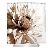 Dahlia Sepial Flower Shower Curtain