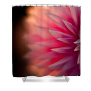 Dahlia Sunset Shower Curtain