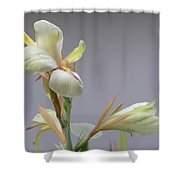 Dainty Orchid Shower Curtain