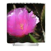 Dainty Pink Cactus Flower Shower Curtain