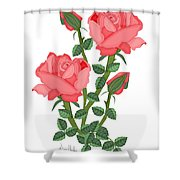 Daiquiri Roses In January 2010 Shower Curtain