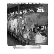 Dairy Farm, C1920 Shower Curtain
