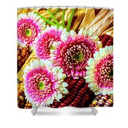 Daises On Indian Corn Shower Curtain