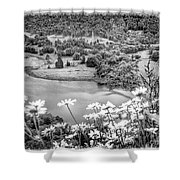 Daisies At Queens View In Greyscale Shower Curtain