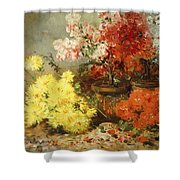Daisies, Begonia, And Other Flowers In Pots Shower Curtain