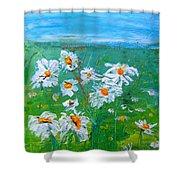 Daisies Shower Curtain
