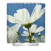 Daisies Floral Art Prints Canvas Daisy Flowers Blue Skies Shower Curtain