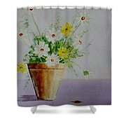 Daisies In Pot Shower Curtain